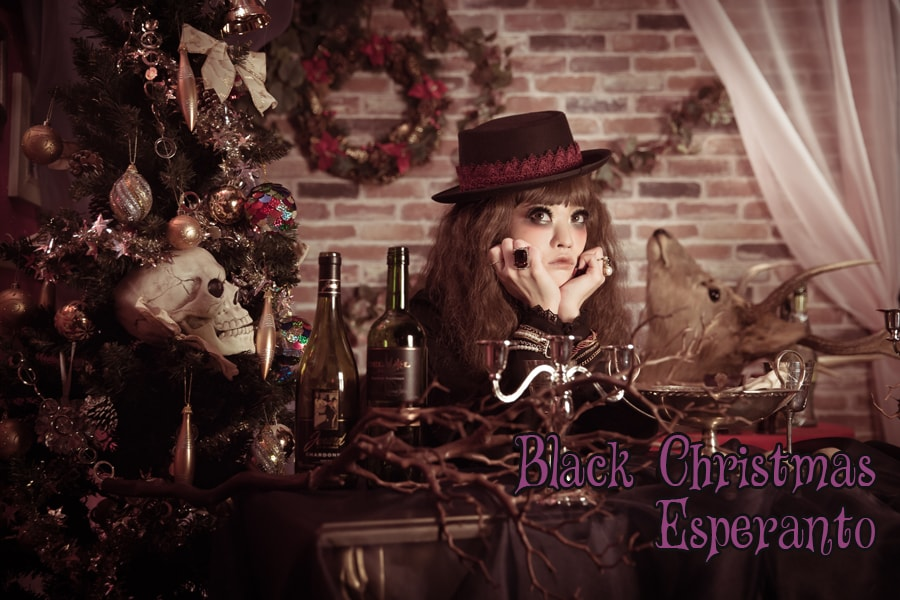 京都 変身写真 ドレス クリスマス サンタクロース 化粧 メイク ヘアメイク コスプレ