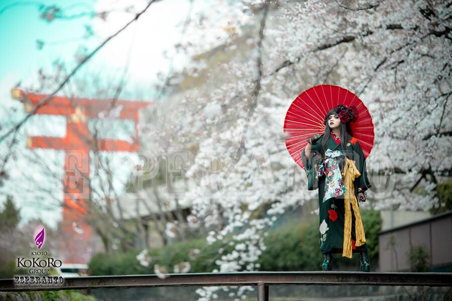 着物で桜ポートレート撮影