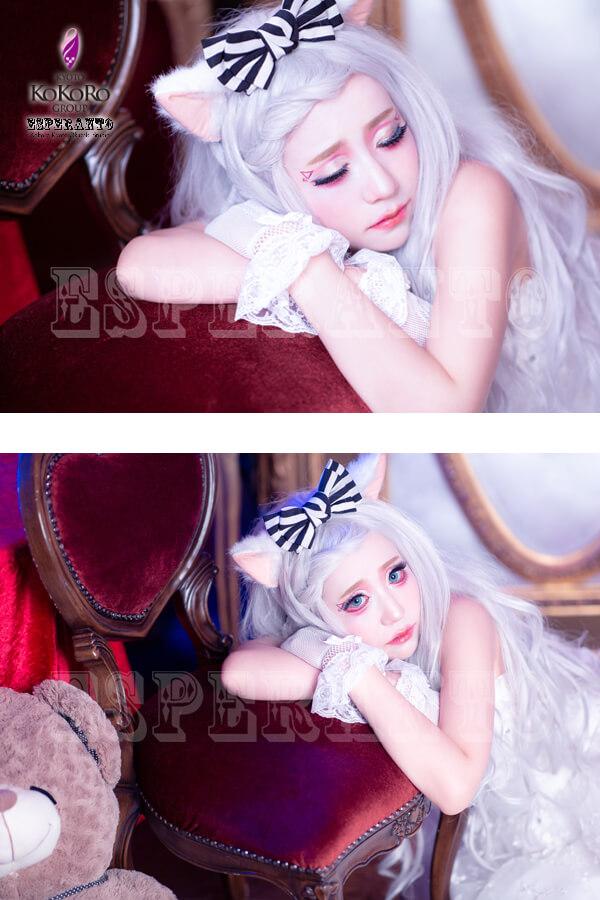 白猫 ドレス