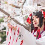 桜の下で巫女体験